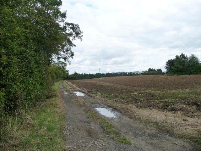 Farm track near Bullybrook