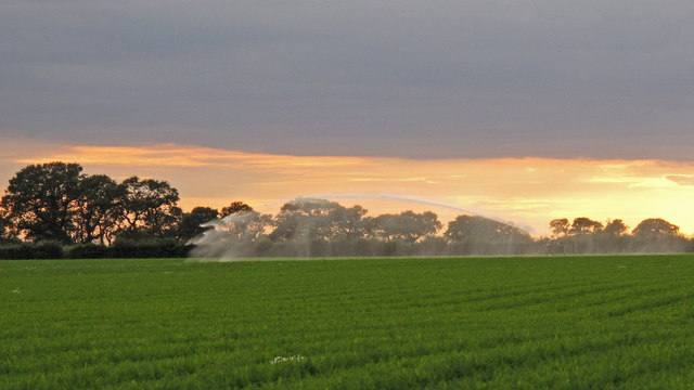 Crop irrigation near Red House Farm, Sudbourne