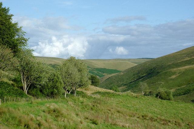 Farmland in Cwm Doethie Fawr, Ceredigion