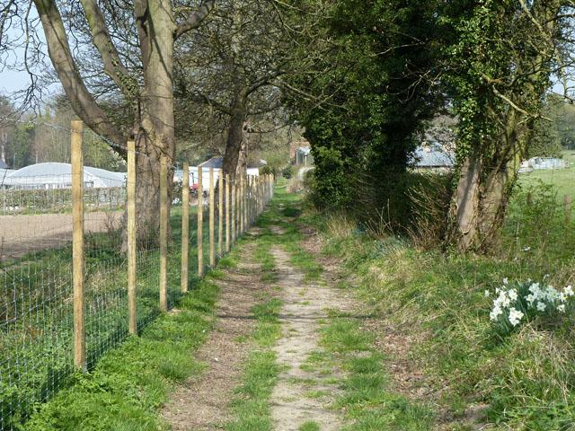 Footpath towards Croydon Lane