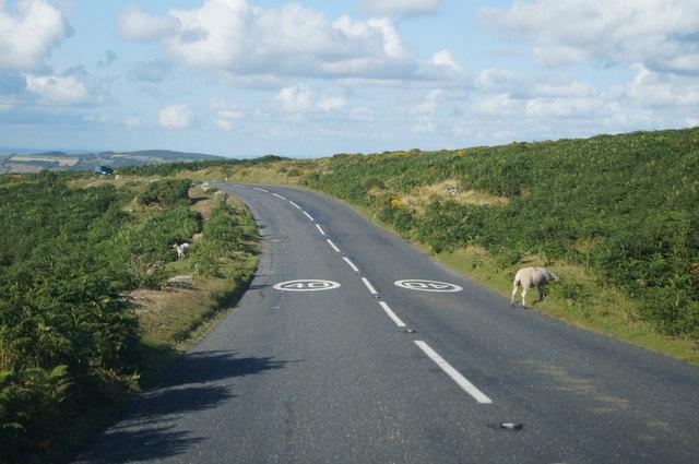The delights of Dartmoor