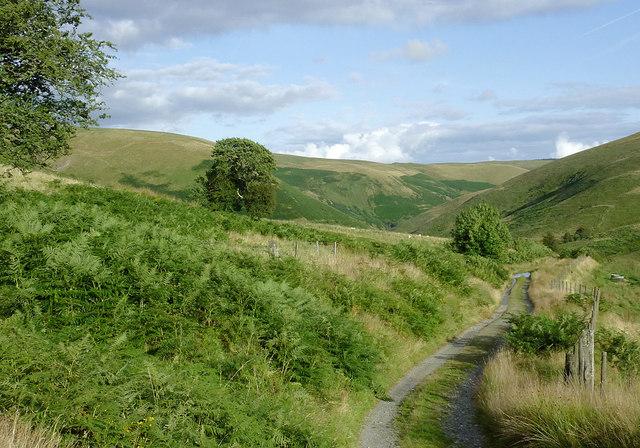 Former drover's road in Cwm Doethie, Ceredigion