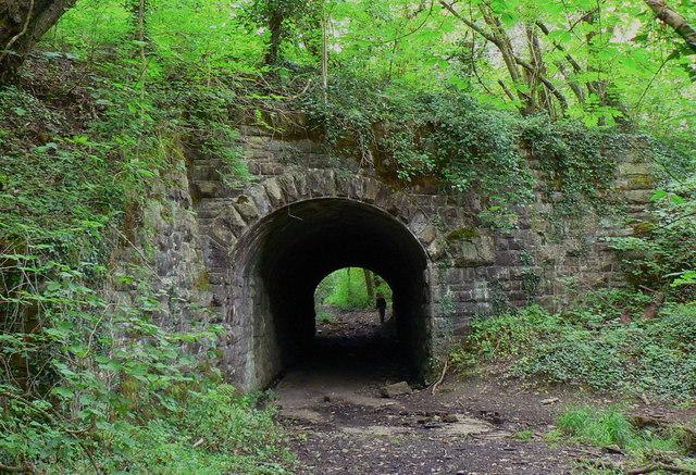 Passage under the Clyne Trail
