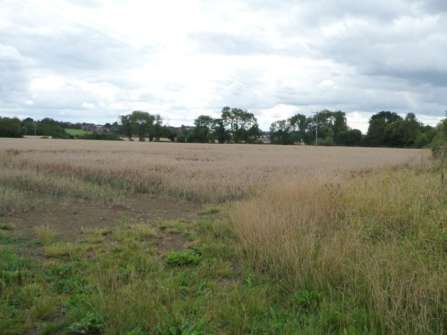 Wheatfield north-east of Wickhamford