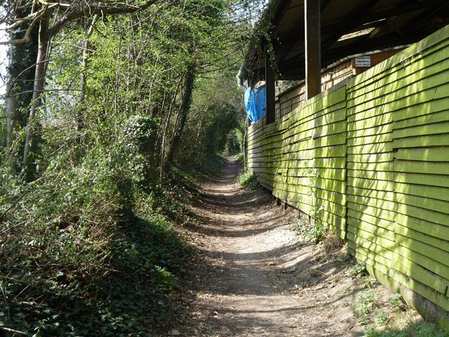 Freedown Lane by Huntersfield Farm