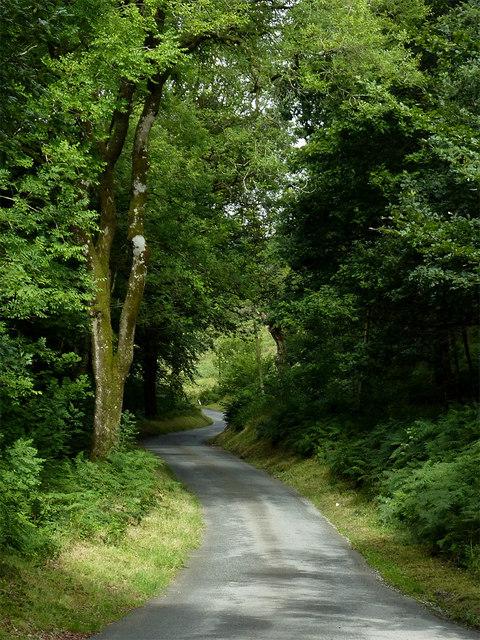 Lane to Strata Florida, Ceredigion