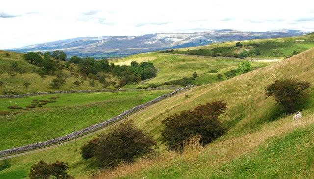 Hill slopes, Ladthwaite Farm