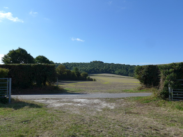 South Downs Way, Winchester to Exton (22a)