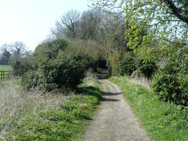 Freedown Lane