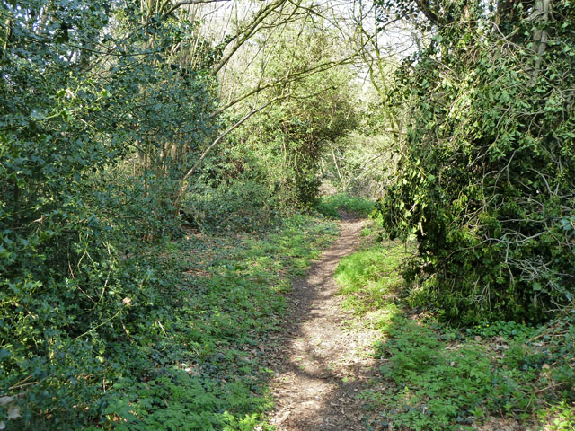 Footpath from Croydon Lane to Freedown Lane