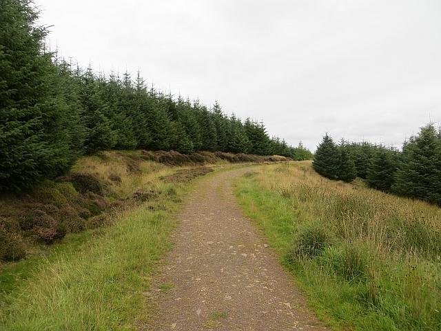Langton Edge track