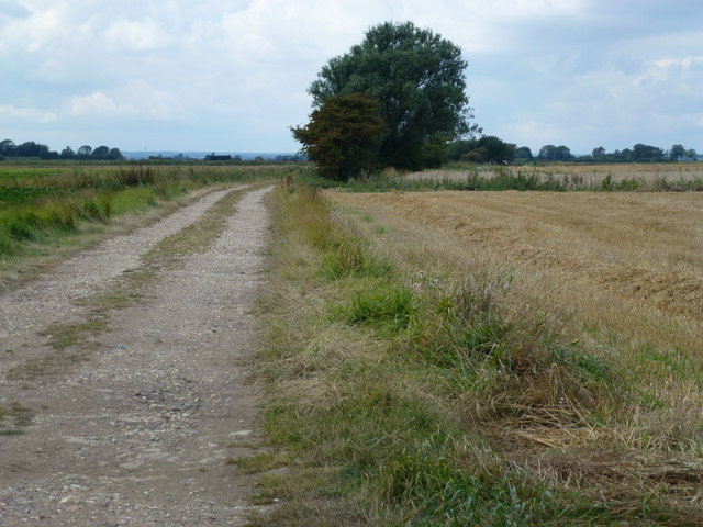 Farm track crossing Burtey Fen