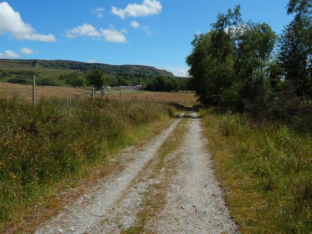 Path beside Barr Wood