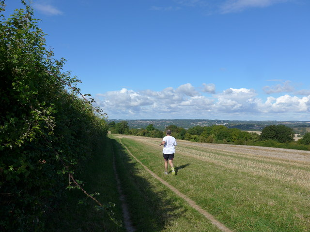 South Downs Way, Winchester to Exton (40)