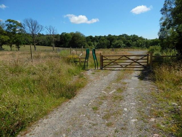 End of a circular path