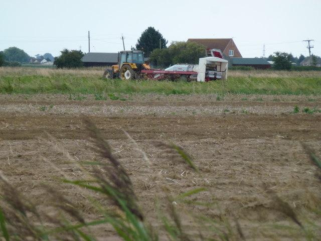 Tractor and harvester near Dockholme Gate, Surfleet