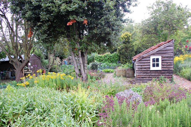 Kitchen garden and shed, The Red House