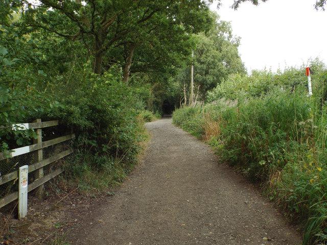 No dig zone, Pinkfield Lane
