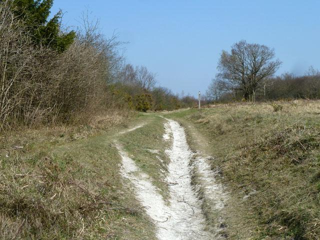 Bridleway, Banstead Downs