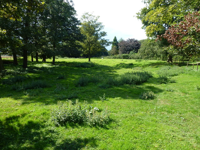 Ancient moat close to Cressy Hall near Risegate, Gosberton