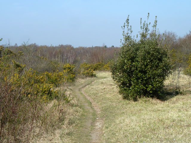 Minor path, Banstead Downs