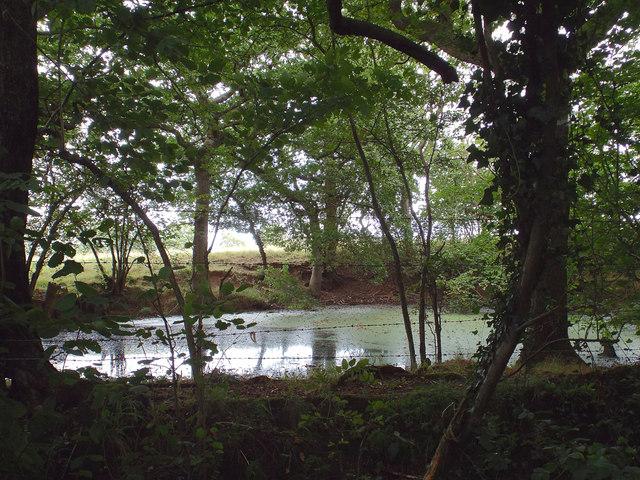 Pond on the north side of Blind Lane