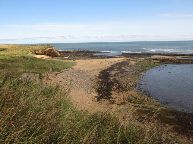 The coast north of Howick Haven