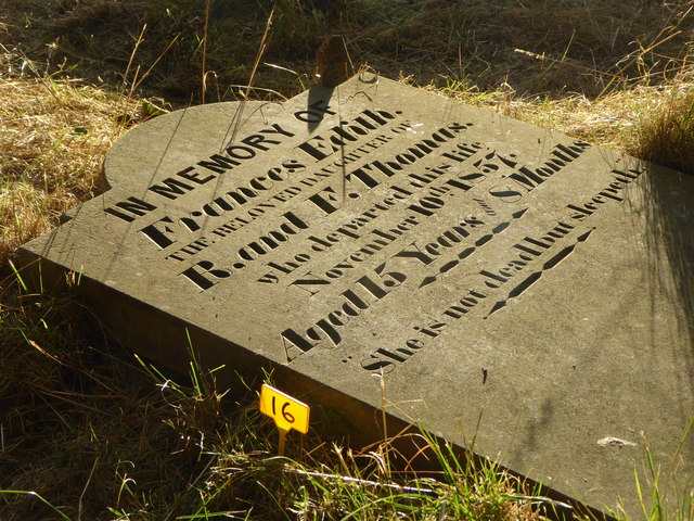 Fallen gravestone in the Dissenters' Burying Ground