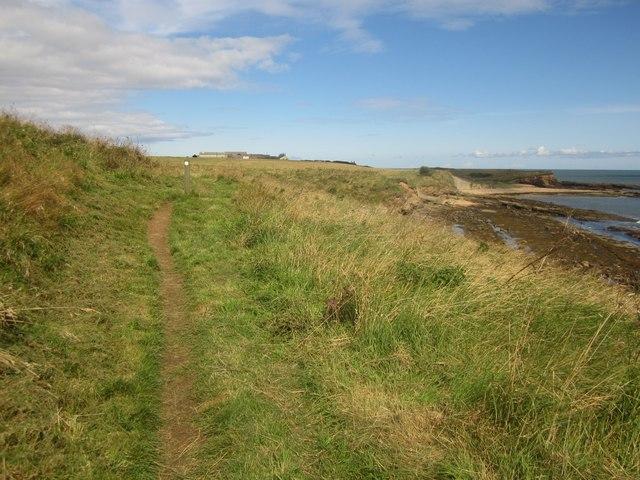 The Northumberland Coast Path south of Howick