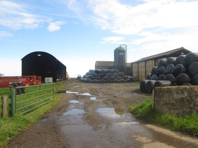 Yard at Low Stead farm