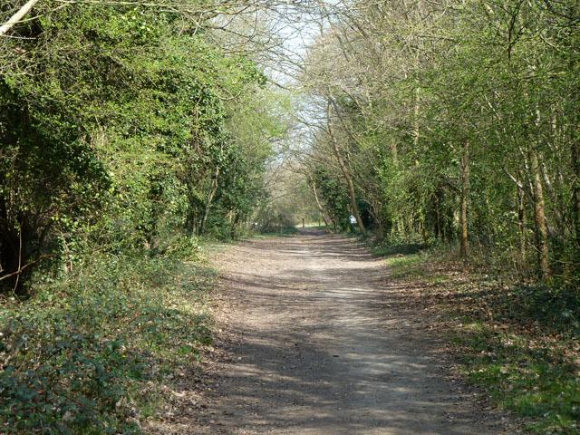 Bridleway Banstead 3