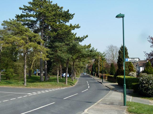 Pine Walk, south carriageway