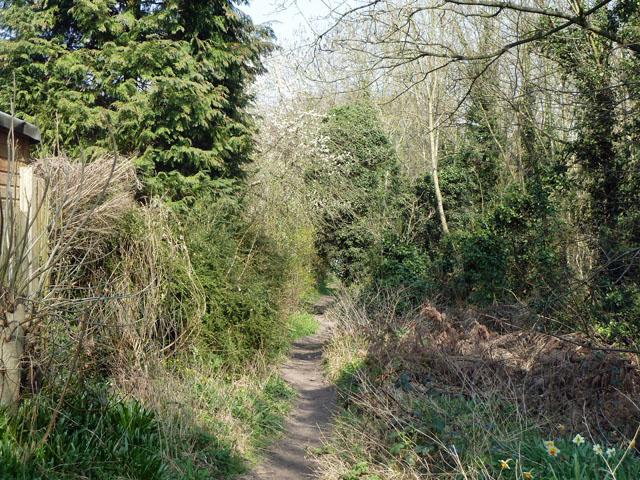Bridleway towards Woodmansterne Road