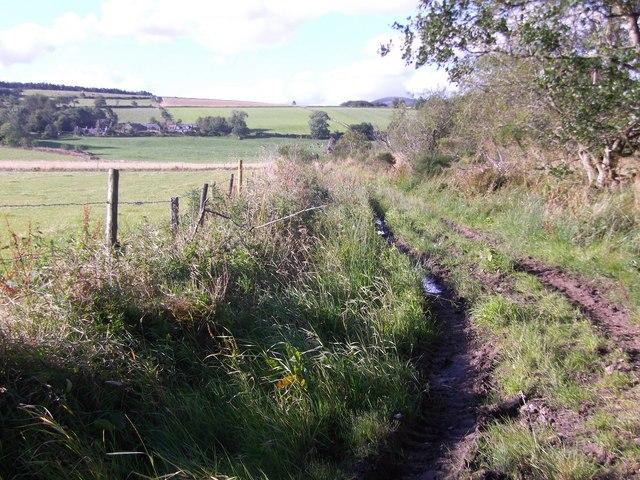 Farm track to Tillynickle
