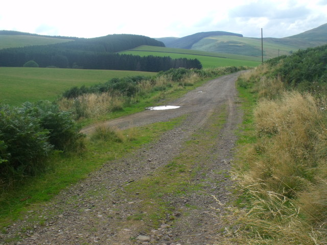 Track junction near Blakedean in the Bowmont valley, Yetholm
