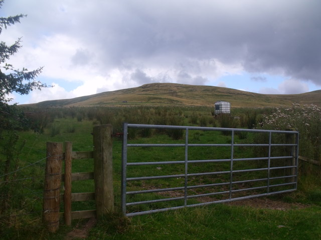 Gateway to Shoulder Hill in Bowmont valley near Yetholm