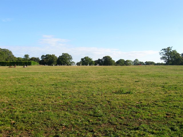 Priors Bush Field/South Field