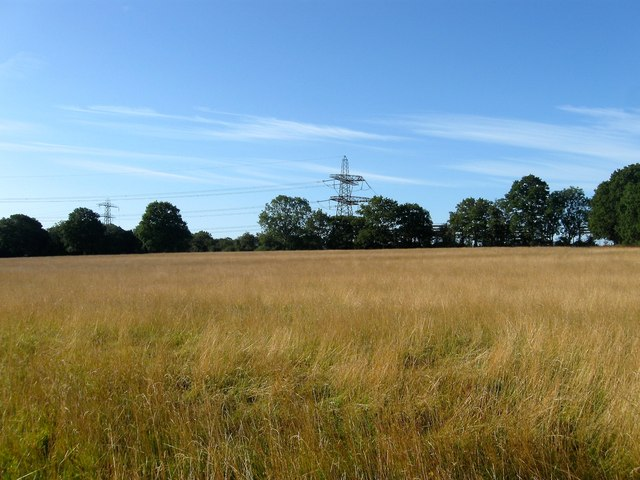 Comb House Field