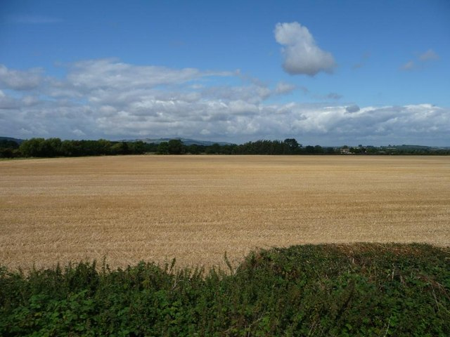 Harvested wheat field, west of Bowmeadow Farm