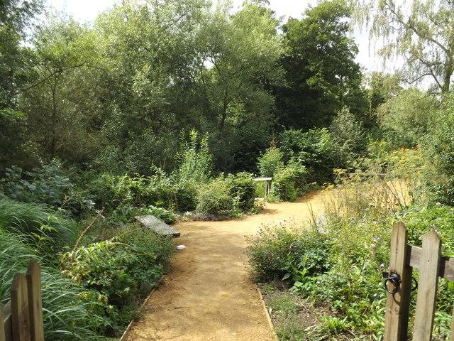 Wildlife Garden at Flatford