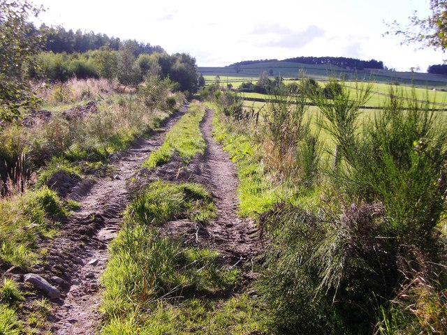 Track to Crooktree