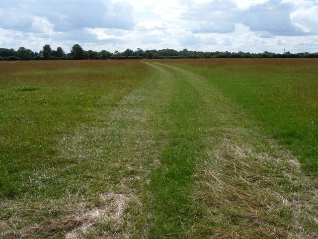 Track through a meadow, north-west of Filkins