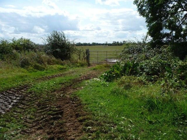 Field entrance, south of Filkins Farm