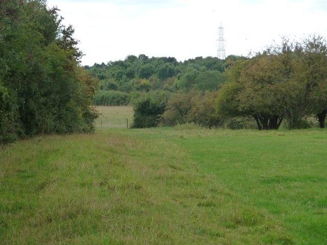 Gate between two fields, north of Filkins Farm