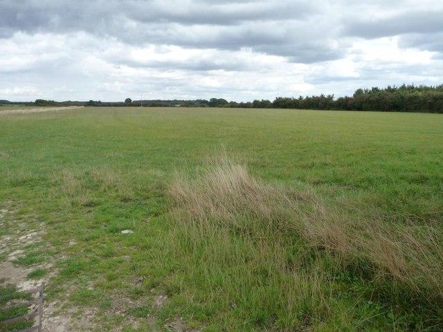 Farmland north of Filkins Farm