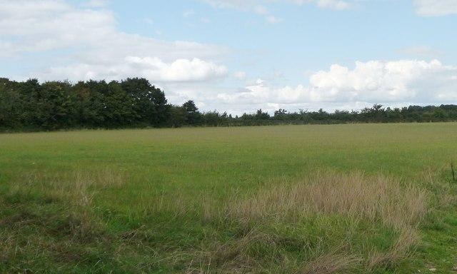 Farmland and woodland, north of Filkins Farm