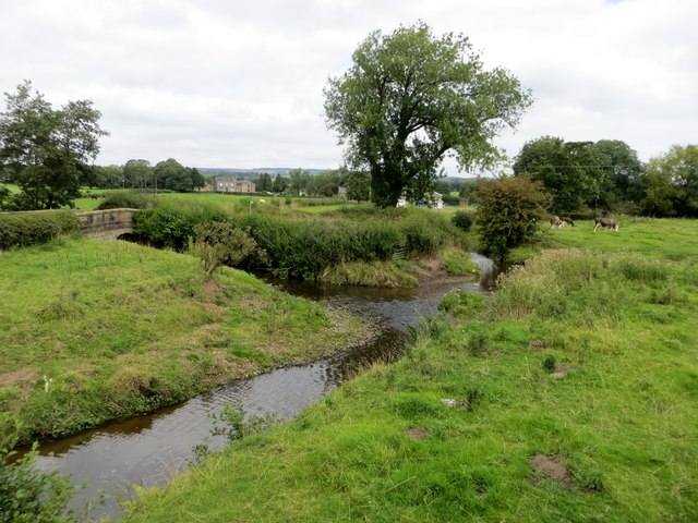 Confluence of Stydd Brook and Boyce's Brook