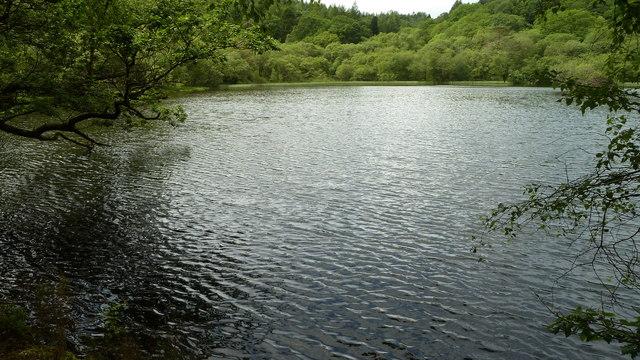 West end of Llyn Mair