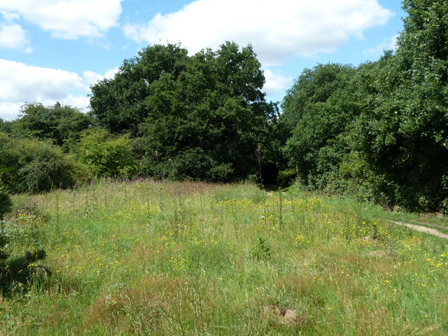 Mound, Mitcham Common
