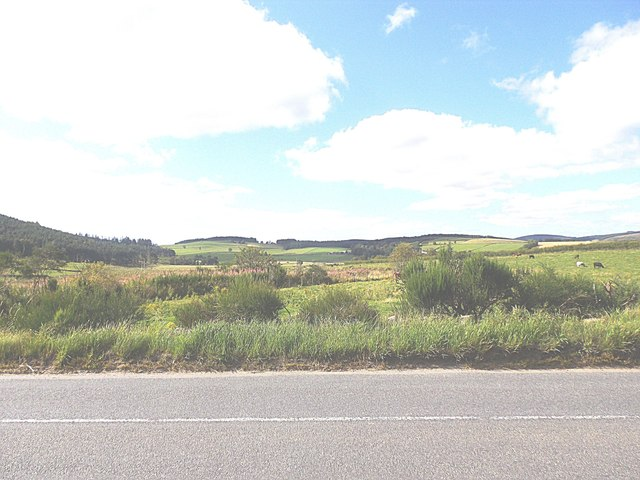 View NW from Birkneuk junction  (A993)